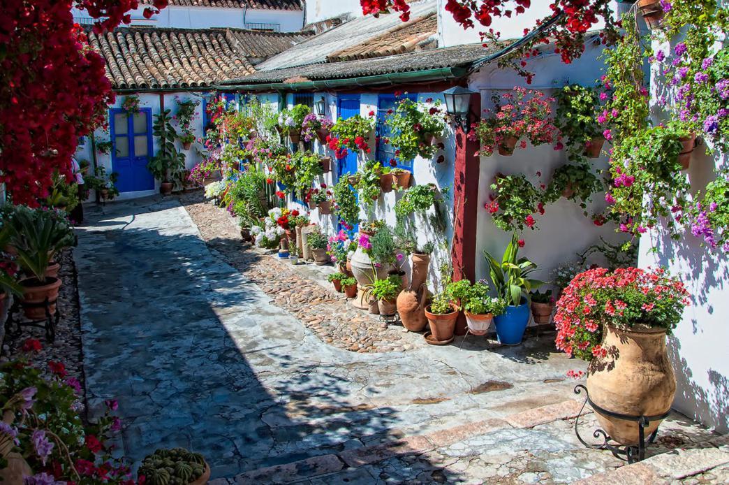 Patios Córdoba